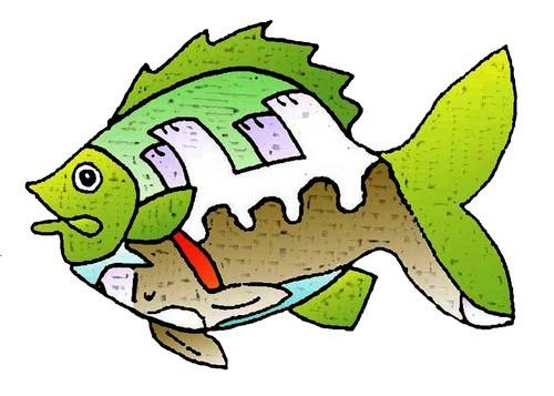 Dog Fish (large view)