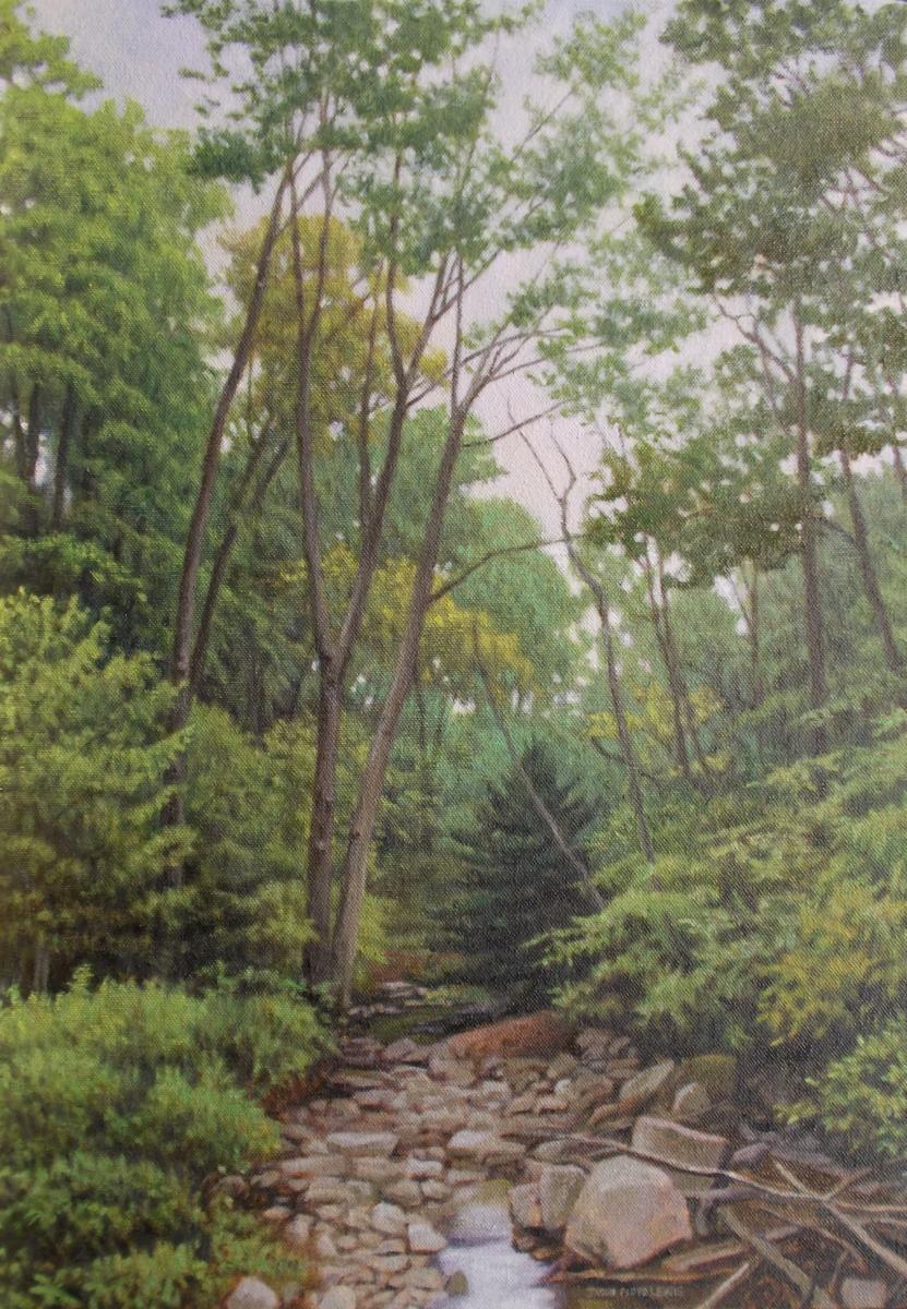Quiet Stream (large view)