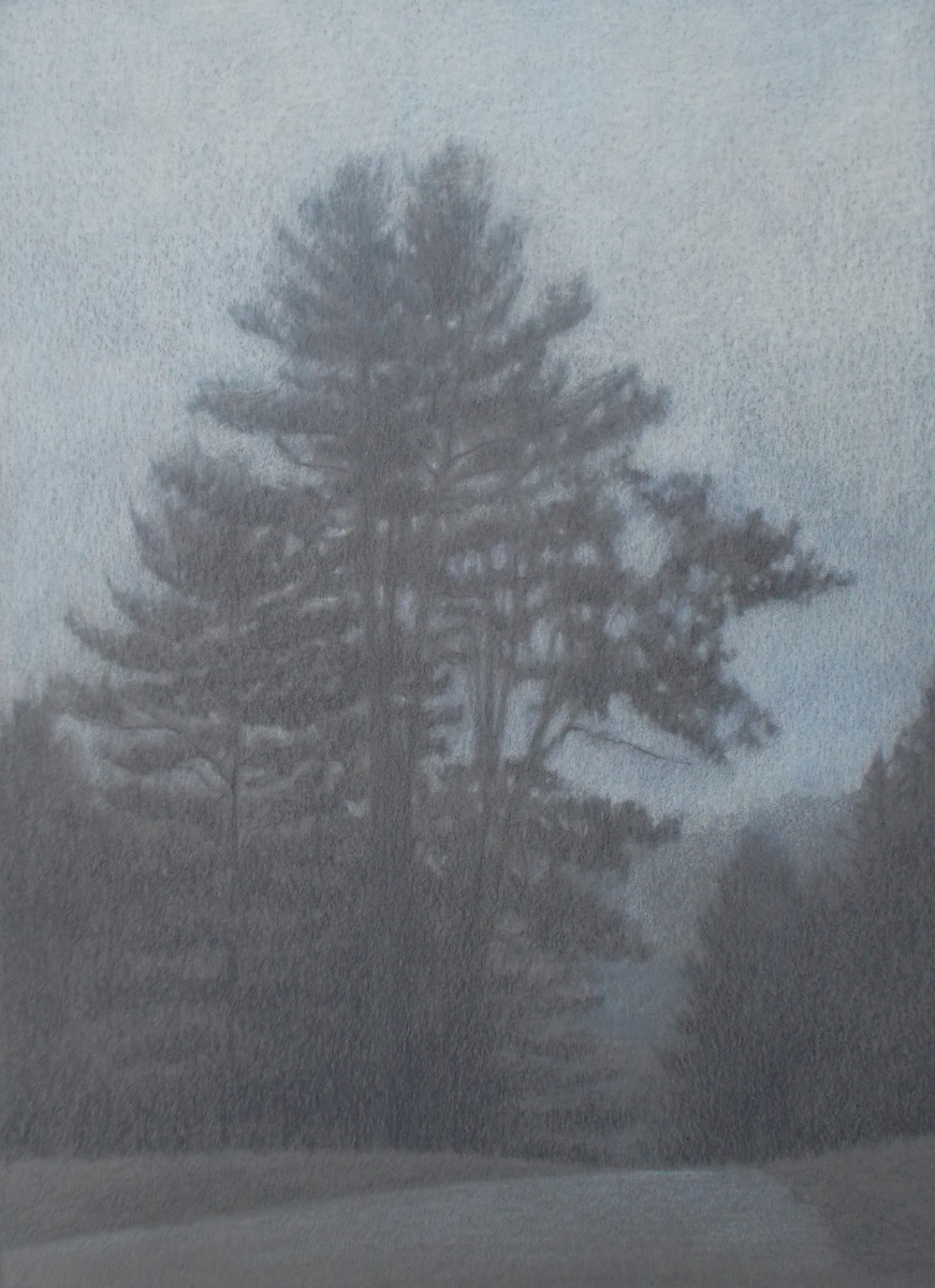 Misty Pines (large view)
