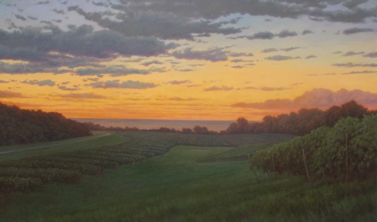 Vineyard Evening (large view)