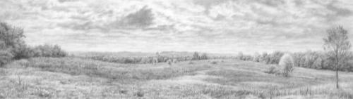 Miola Panorama