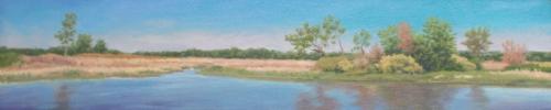Pond Shore