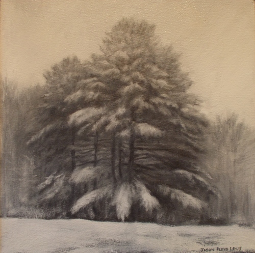 Pines in Snow