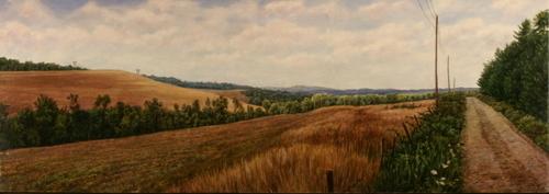 Ketner Hayfield (large view)