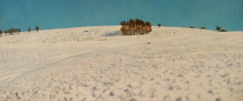 Snowfield (large view)