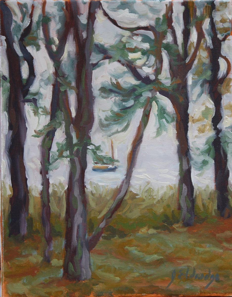 Fog Through Pines 4 (large view)