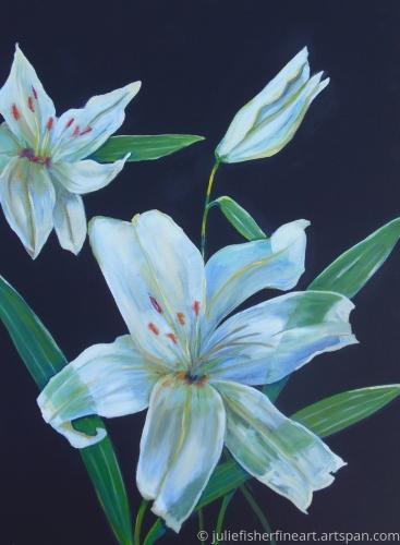 Progression (White Lillies)