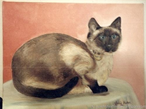 Friend's Siamese Cat