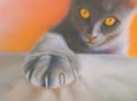 The Paw (thumbnail)