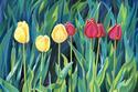 Tulip Parade (thumbnail)