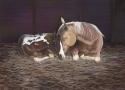 Painting--Pastels-AnimalsSleepy Time