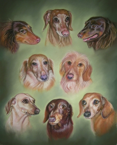 Painting--Pastels-AnimalsKerry's Doxie Family