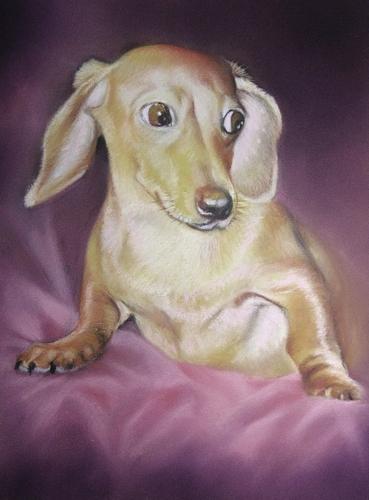 Painting--Pastels-AnimalsCorky