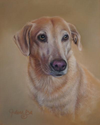 Golden Labrador Retriever (large view)