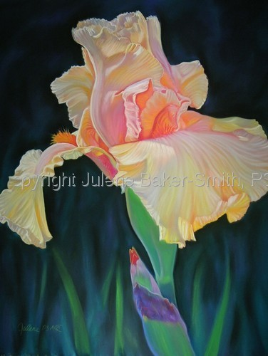 Painting--Pastels-FloralLovely Lady