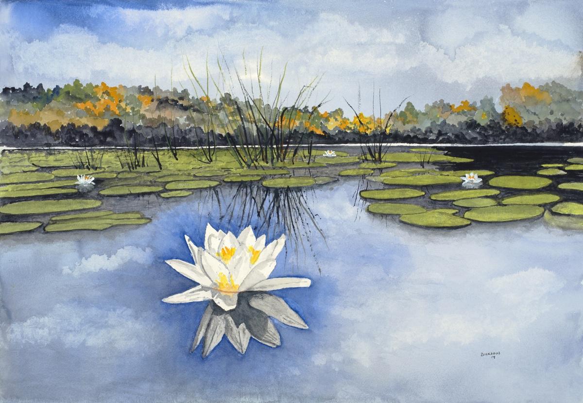 Landscape Watercolor Paintings Lotus Flowers By John B Dickson