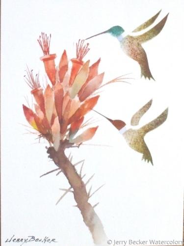 Hummingbirds & ocotillo