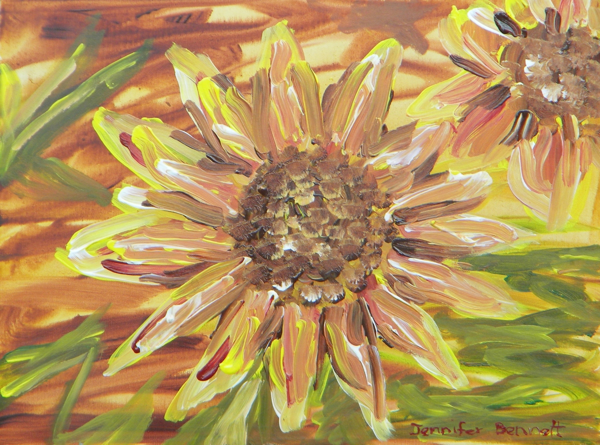 Manito sunflower (large view)