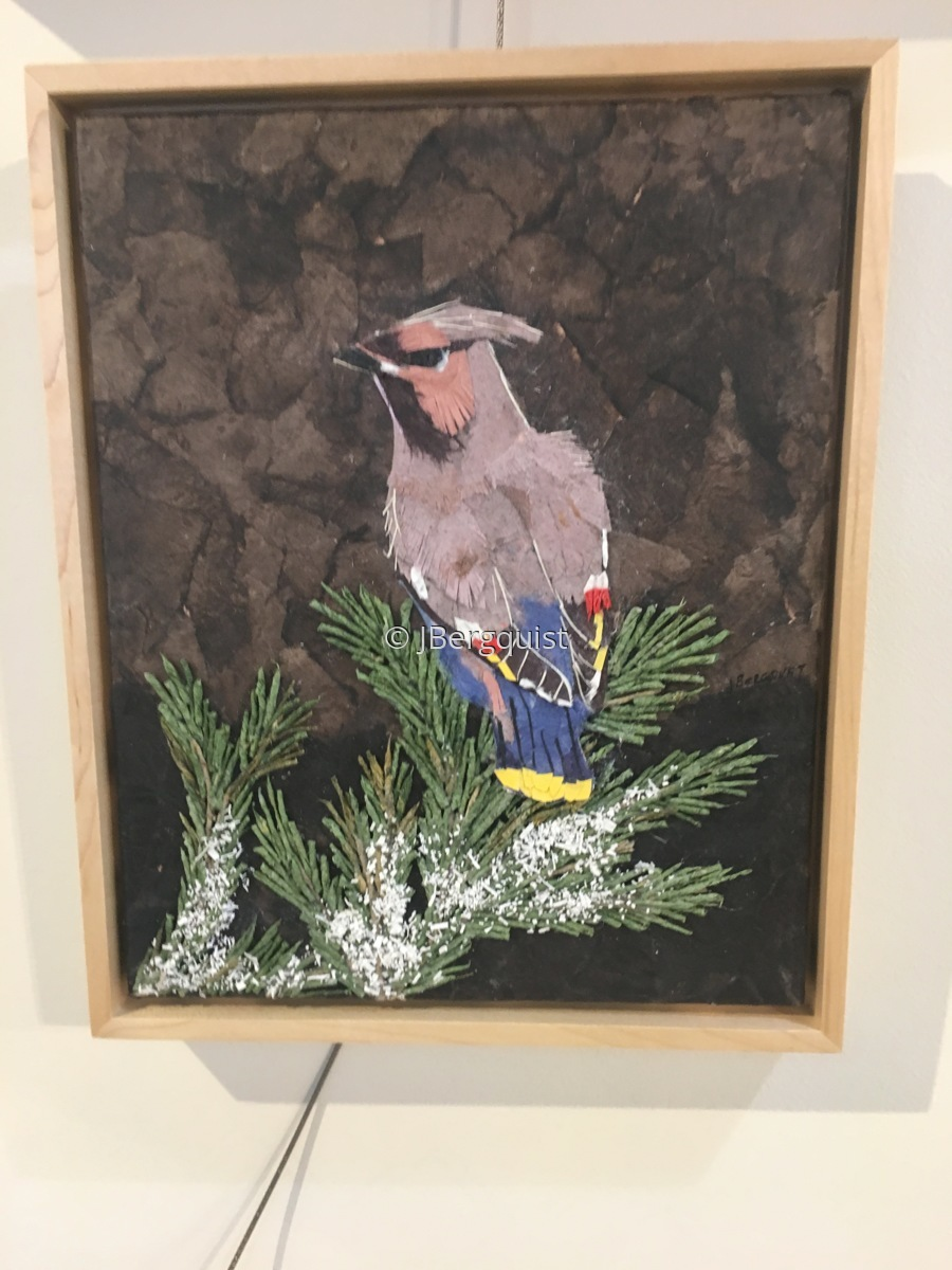 Framed Cedar Wax Wing (large view)