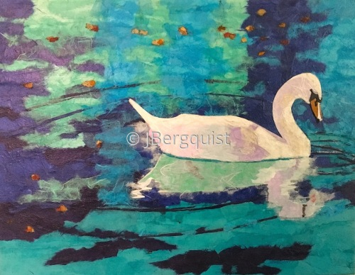 swan fall reflection I