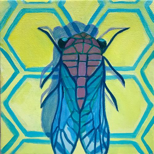 Mini Cicada 1