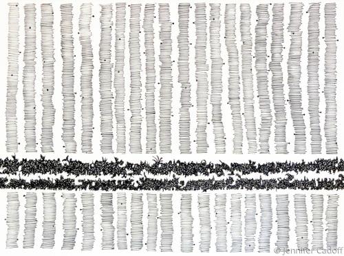 Migrations by Jennifer Cadoff