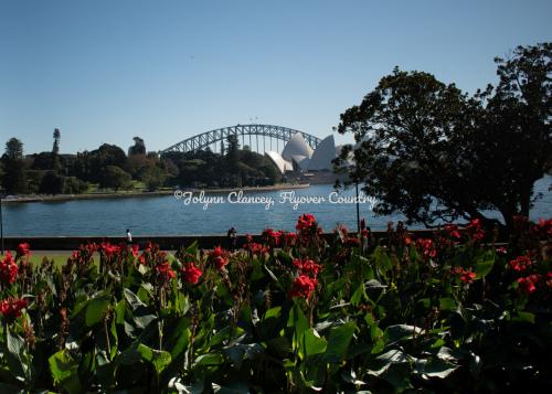 Sydney Royal Botanical Gardens - A Typical Day in Sydney