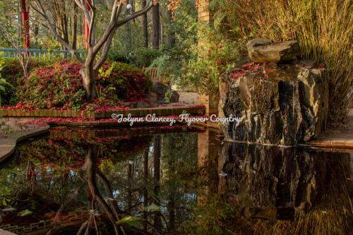 NSW Australia - Tranquil Garden 2