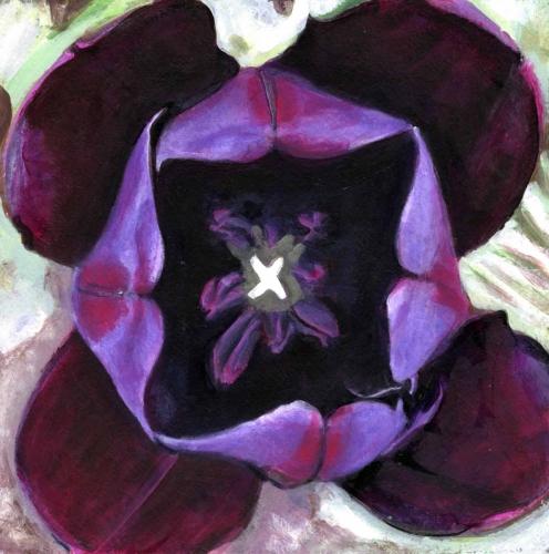 Interior - Tulips