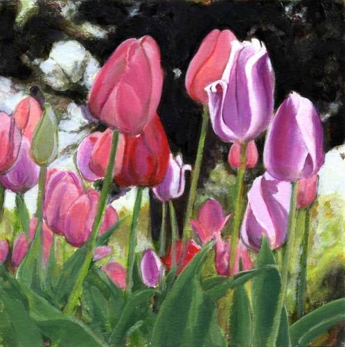 Gathering - Tulips
