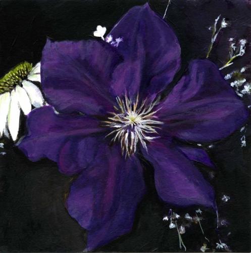 Etiole Violette - Clematis