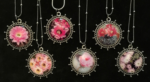 The Cactus Flower Collection