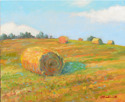 Bales of Hay on Farm Field Slope (thumbnail)