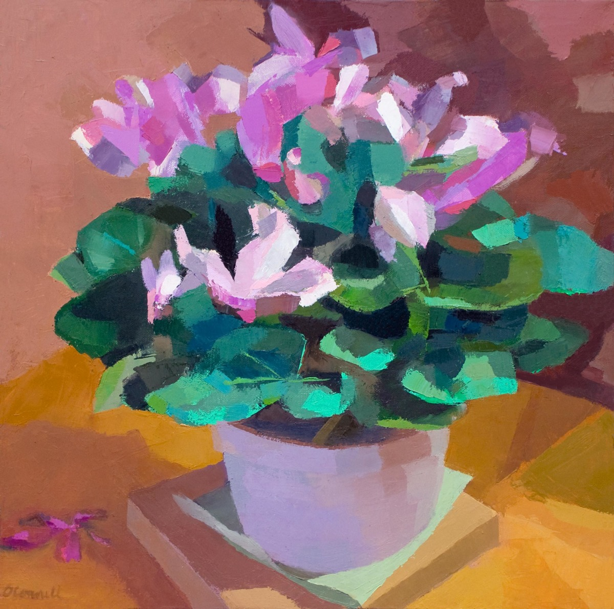 Cyclamen (large view)