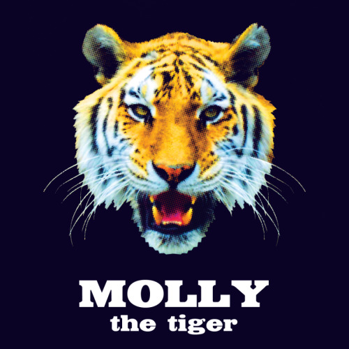Molly the tiger