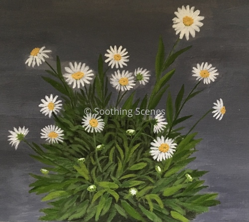 Bunch of Daisies by Soothing Scenes by Joyce GR