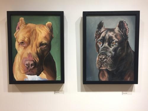 Nala and Koa on display