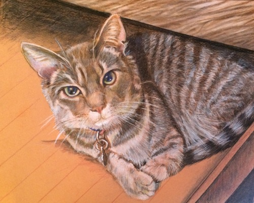 Drawer for a Tabby