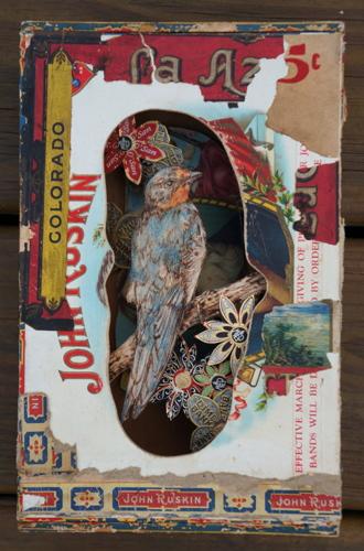 Birdbox 12