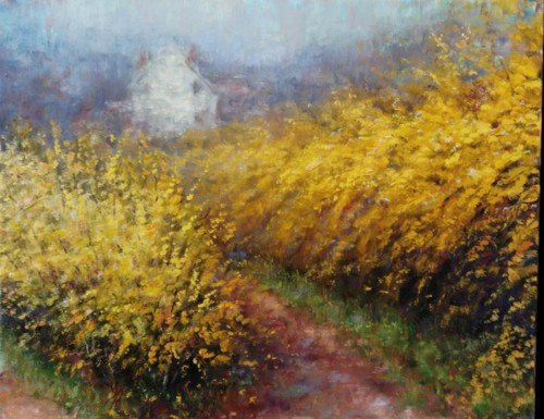 Forsythia on the Lane
