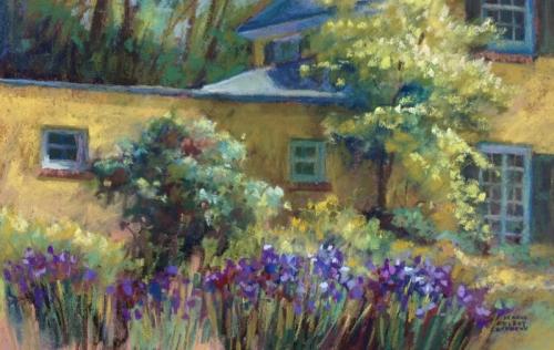 Irises in the Morning