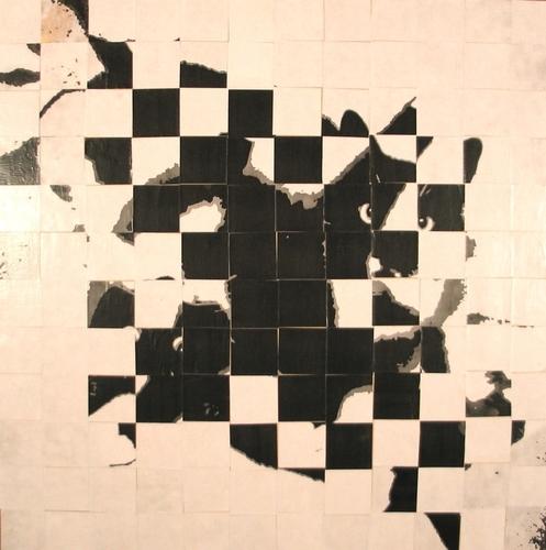Schrodinger's Cat 1
