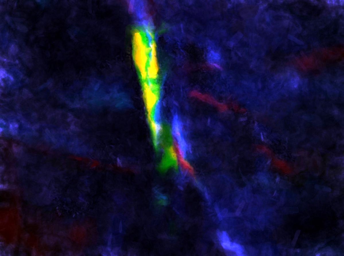 Bioluminescence (large view)