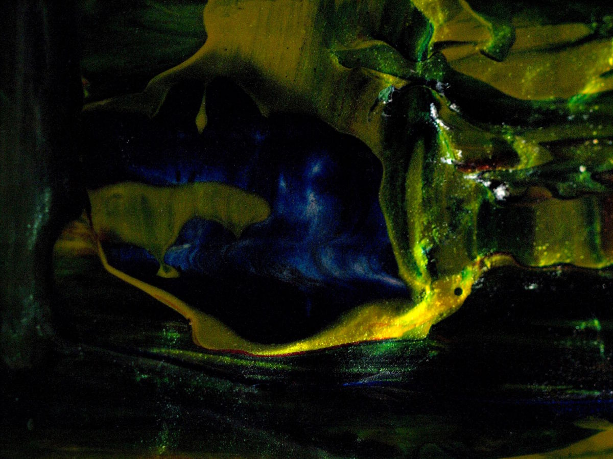 Sleeping Blue Panther (large view)