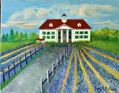 Lavender Fields WA