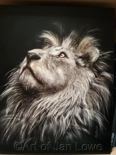 Ode to Cecil by Jan Lowe's Passion of Animals & Realism