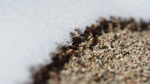 Macro od Snow and Sand by Jeps