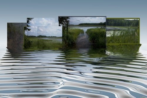 Waterway Corridor: Reflection Series
