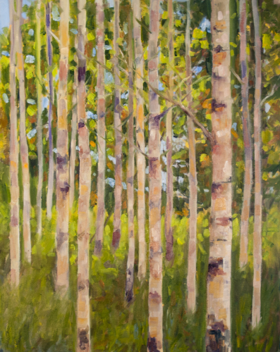 Spring Aspens by Jerrine A Micklewright Fine Art Oil Paintings
