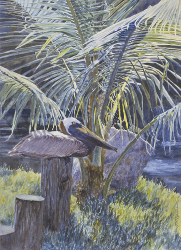 Pelican in Paradise by James Newman